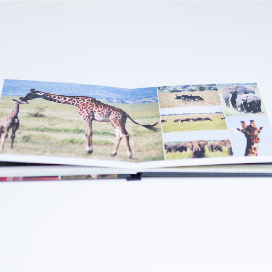 custom photo album book showcasing travel photos